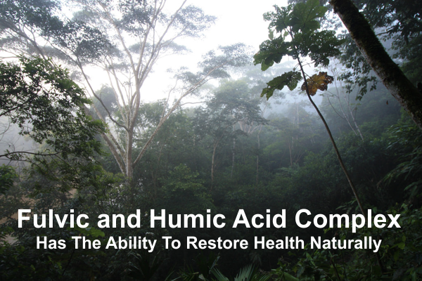 Fulvic and Humic Acid Complex